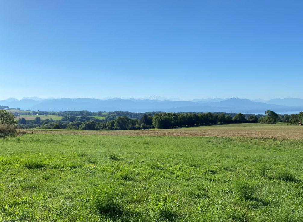 Agence Immobilière terrain construire Le Vaud